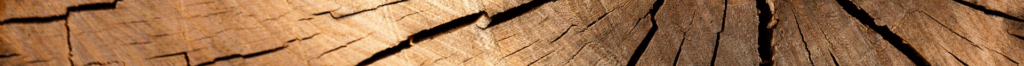 bois menuiserie